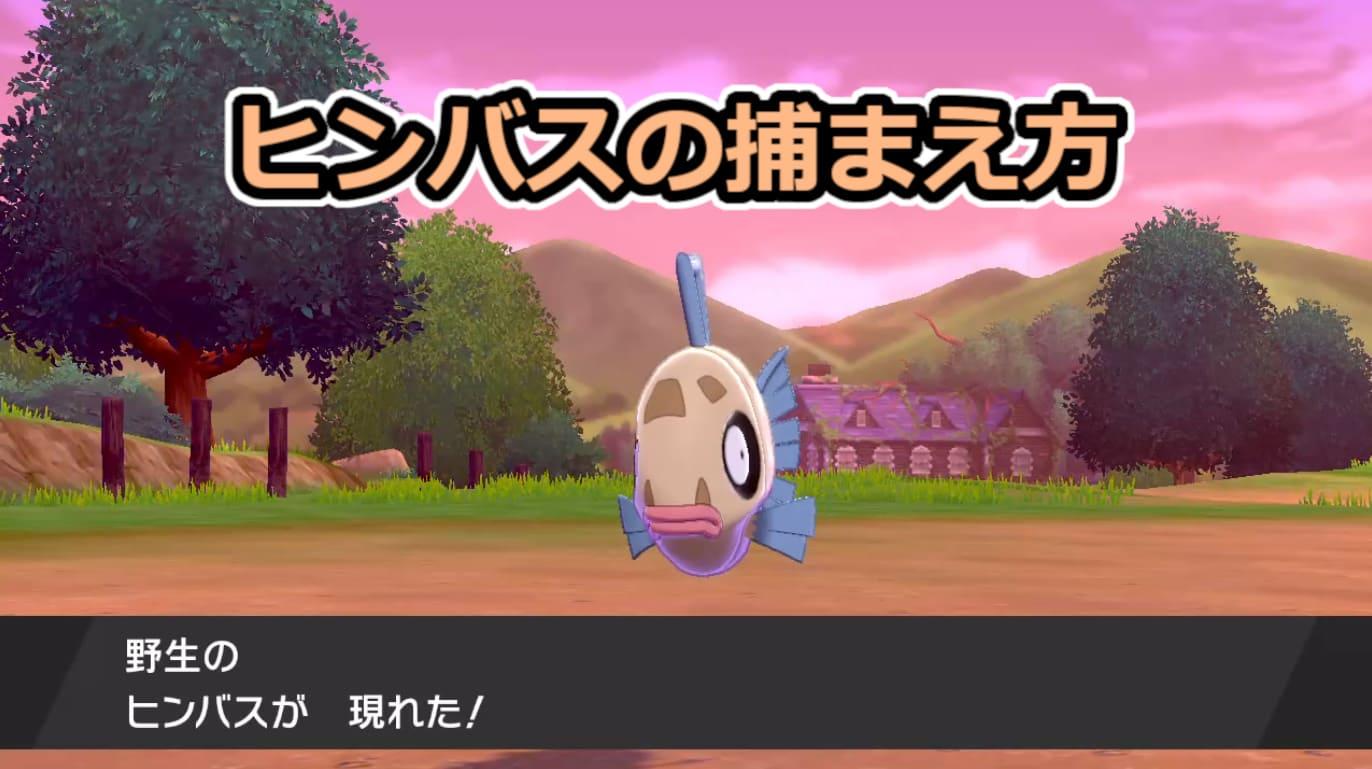 【ポケモン剣盾】ヒンバスの出現場所と進化方法