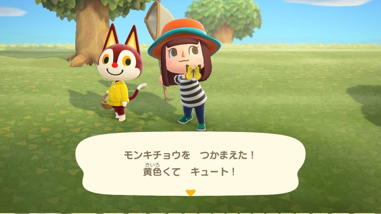 あつまれどうぶつの森プレイ日記2【カン島初日】