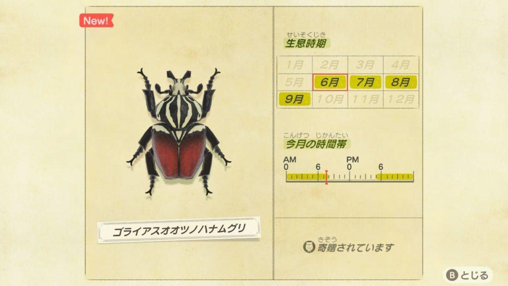 ゴライアスオオツノハナムグリのデータ
