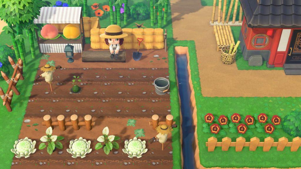 畑を作る2