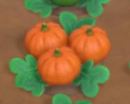 オレンジのかぼちゃ