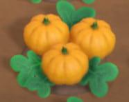 きいろいかぼちゃ