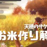 【サクナヒメ】米作りの攻略解説