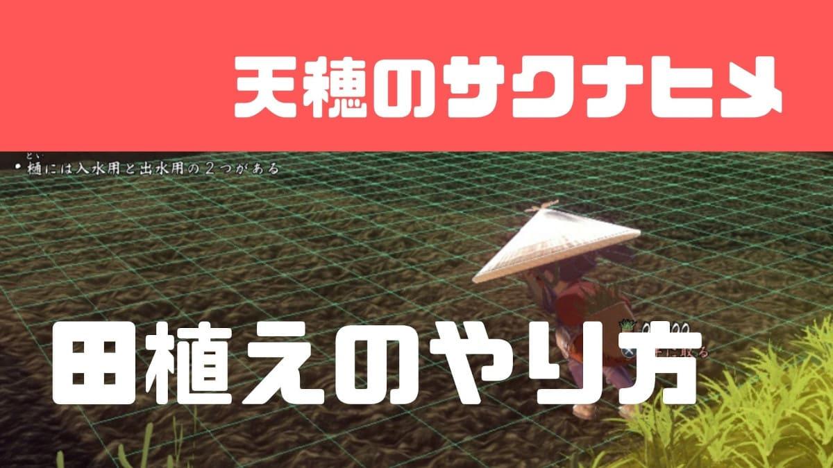 【サクナヒメ】田植えのコツと植える密度の目安