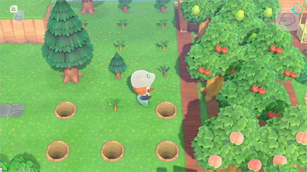 木を植えていく