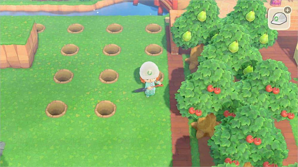 穴を掘って木を植える場所の目印にする